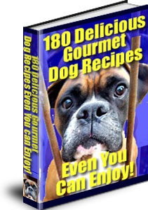 Gourmet Recipes for Your Dog!